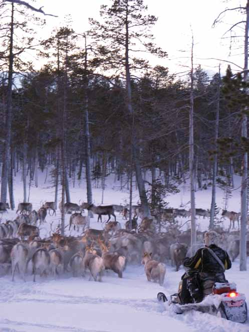Furthermore, the working group proposed the compilation of a report on the application of the Akwé: Kon Guidelines to the management and land use plan in Finnish and North Saami.