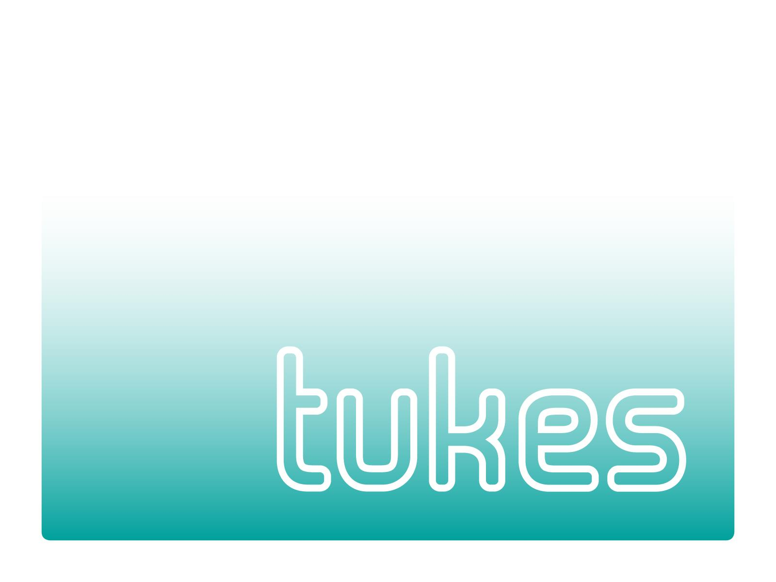 Finnish Safety and Chemicals Agency (Tukes) Sanna