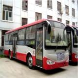 (*) CNG City bus