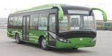 bus CNG (*)