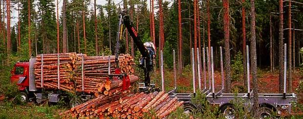 Stora Enso Optimisation of wood logistics Customer(s): Stora Enso Customer s Challenge: Optimisation of wood harvesting and