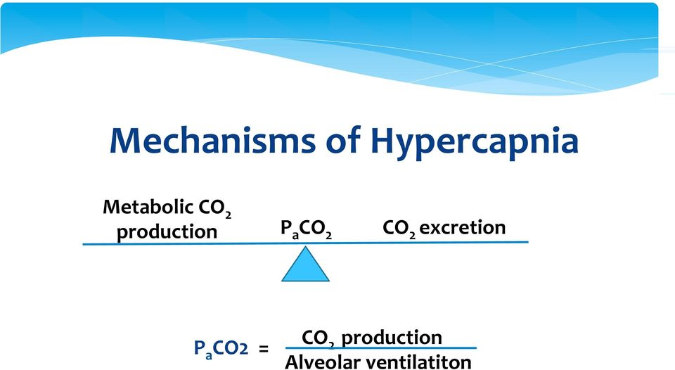 CO 2 CO 2 excretion P a CO2 =