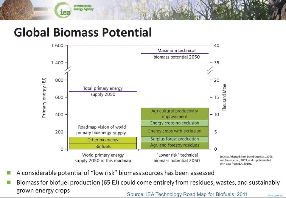 A considerable potential of low risk biomass sources has been assessed Biomass for biofuel production
