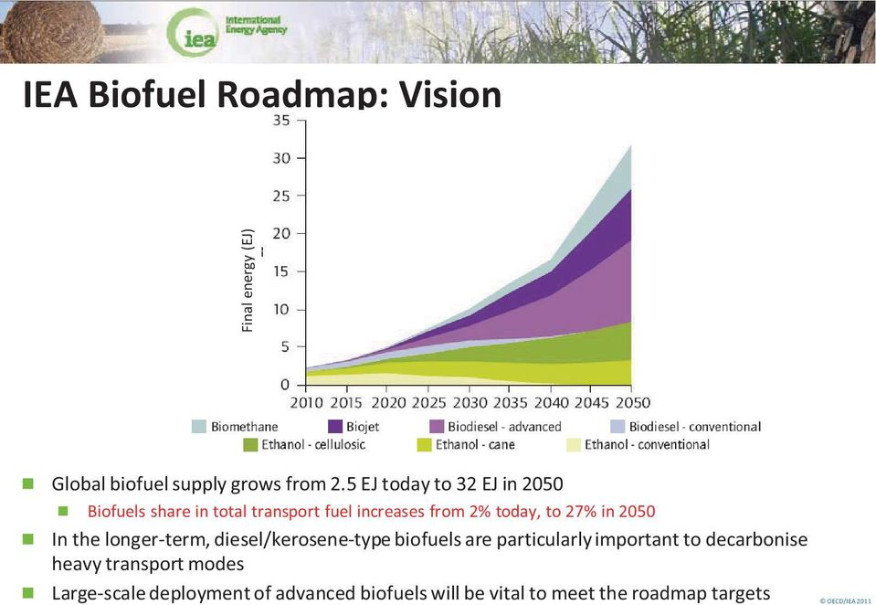 in 2050 In the longer-term, diesel/kerosene-type biofuels are particularly important to decarbonise