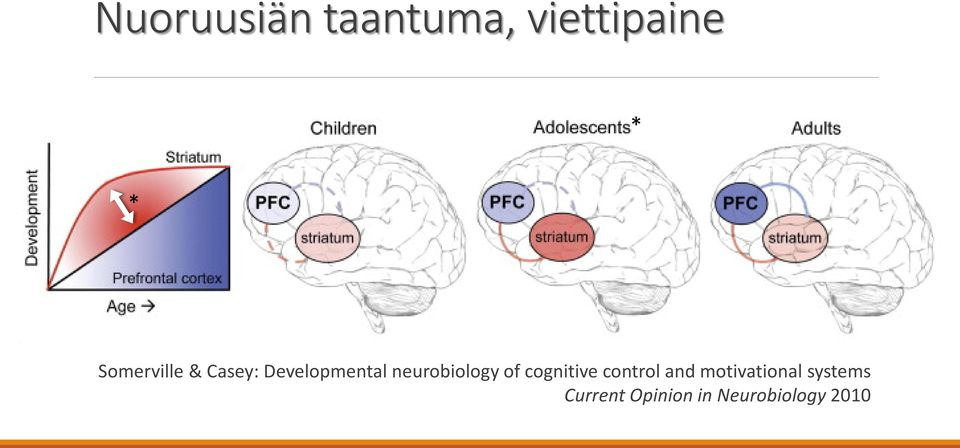 neurobiology of cognitive control and