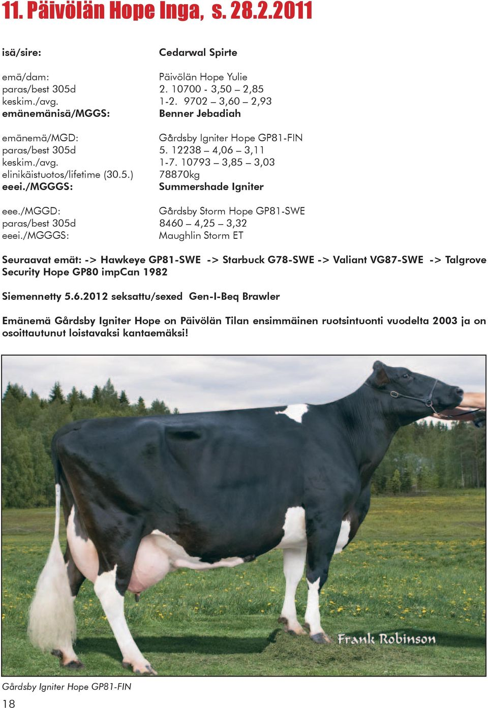 /mggd: Gårdsby Storm Hope GP81-SWE paras/best 305d 8460 4,25 3,32 Maughlin Storm ET Seuraavat emät: -> Hawkeye GP81-SWE -> Starbuck G78-SWE -> Valiant VG87-SWE -> Talgrove Security Hope