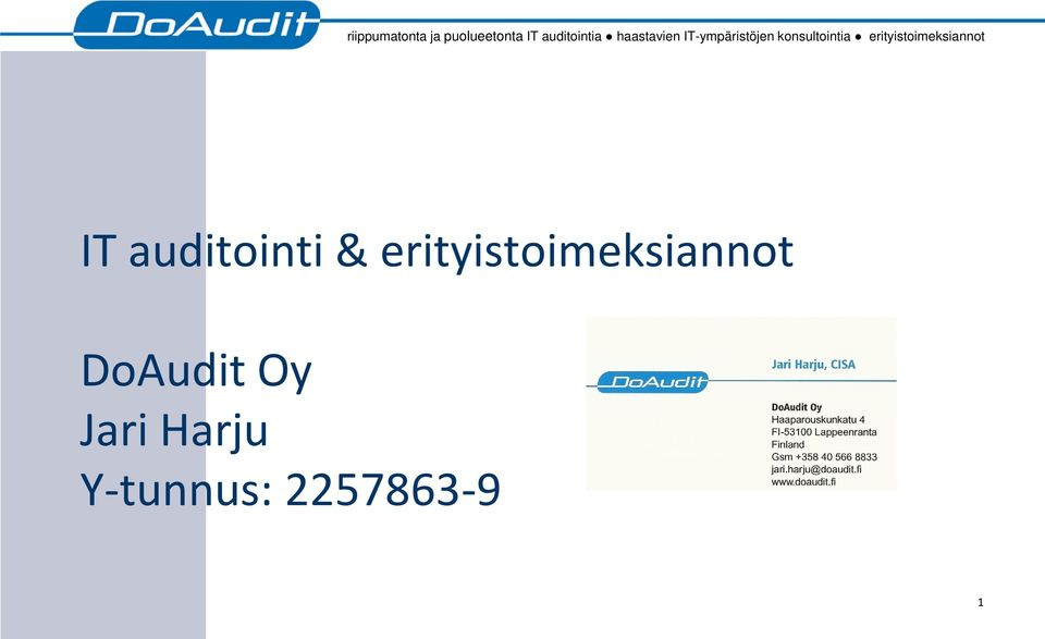 erityistoimeksiannot IT auditointi &