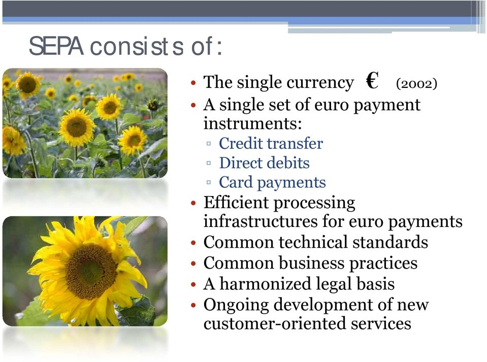 infrastructures for euro payments Common technical standards Common business