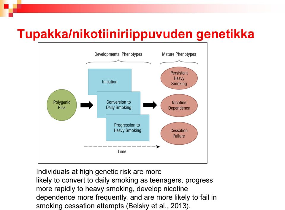 rapidly to heavy smoking, develop nicotine dependence more frequently,