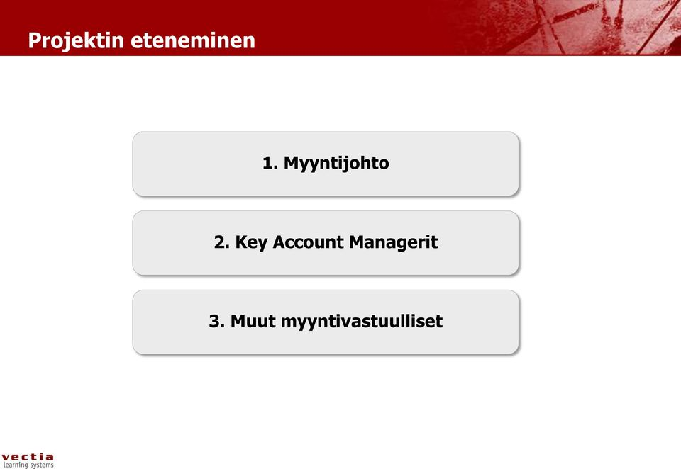 Key Account Managerit