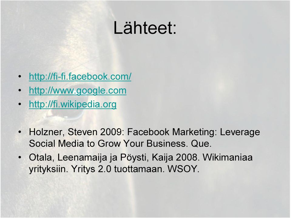 org Holzner, Steven 2009: Facebook Marketing: Leverage Social