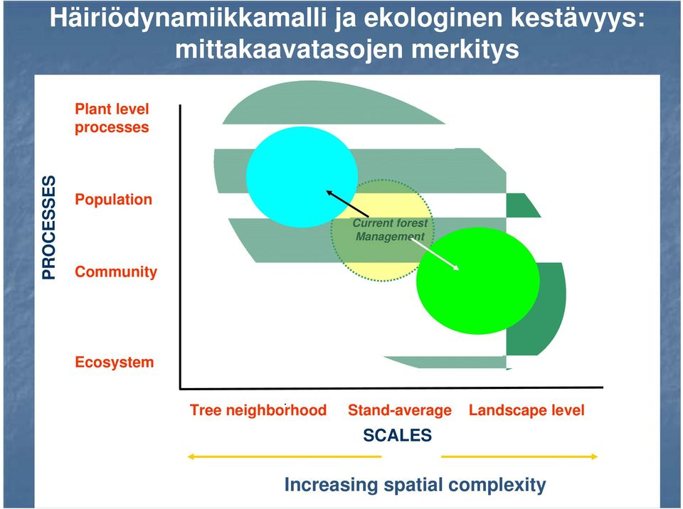 Population Community Current forest Management Ecosystem.