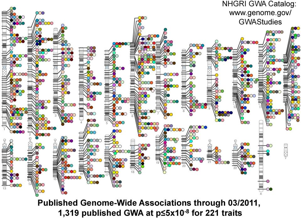 Genome-Wide Associations through