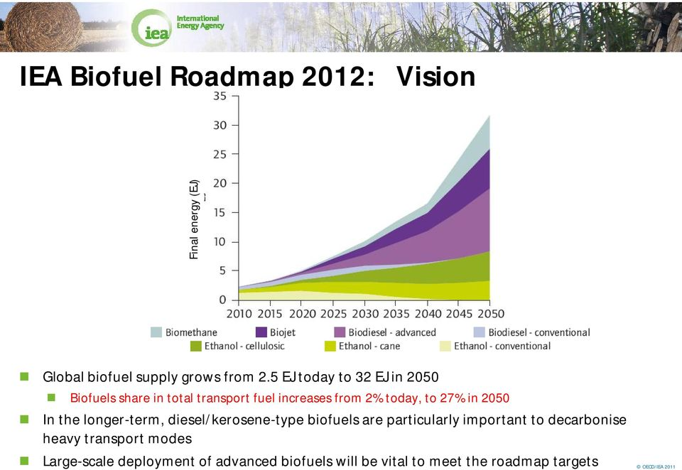 2050 In the longer-term, diesel/kerosene-type biofuels are particularly important to decarbonise