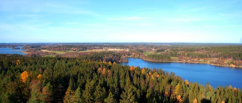 The potential of Finnish forests Finland s well-being is based on our ability to use renewable resources