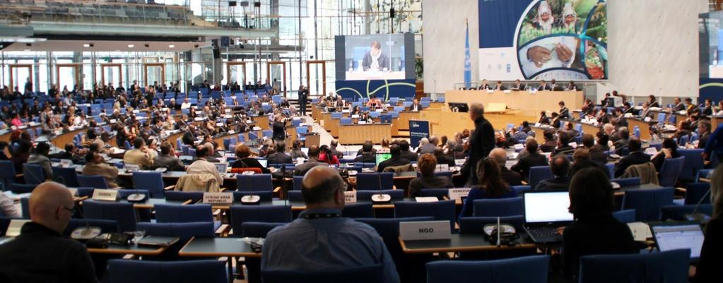 First Plenary IPBES-1