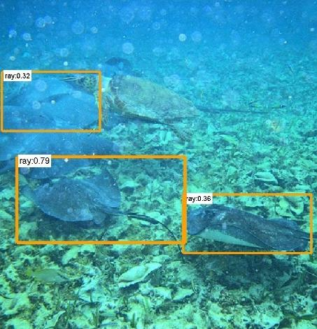 28,2 25,8 ImageNet Classification top-5 error (%) Fish or stone?