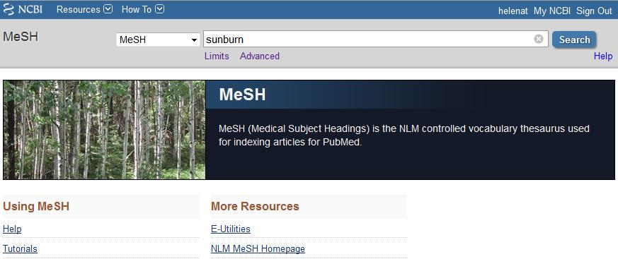 Restrict to MeSH Major Topics