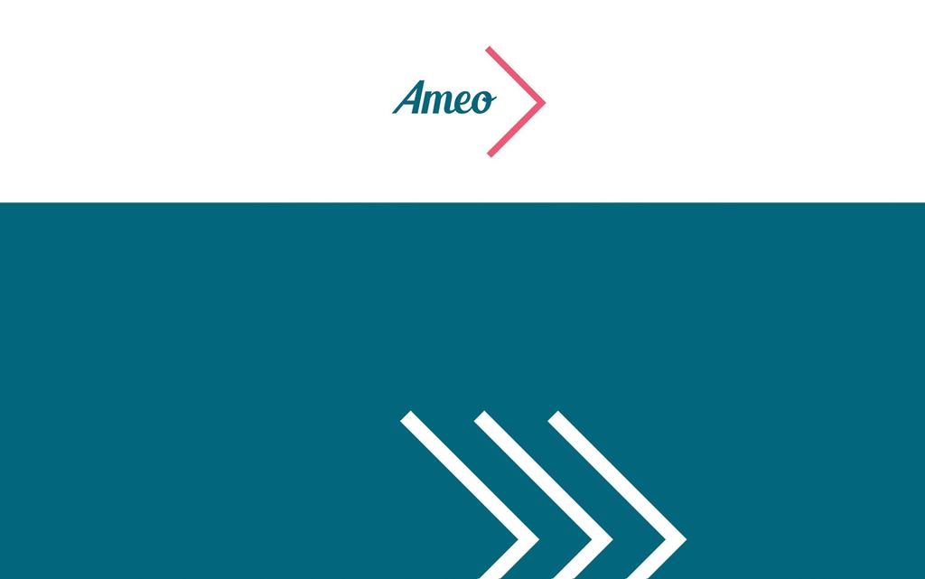 AMEO-strategia